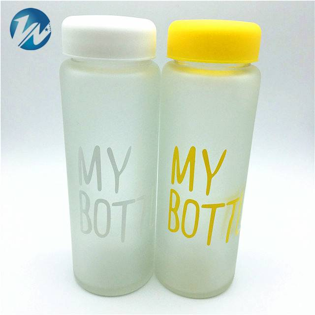 500ML Frosted My Bottle Sport Glass Fruit Juice Water Bottle