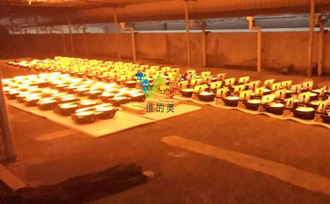 Mass production of solar synchronous fog lamps