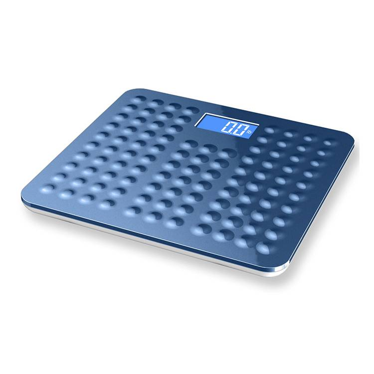 8 Year Exporter Food Scale -