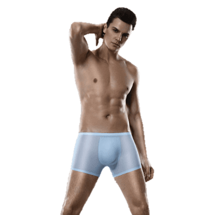 Fashion Summer Ultra Thin Soft Meryl Fabric Seamless Mens Boxer Shorts Underwear Featured Image