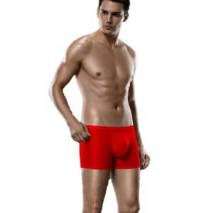 Fashion Summer Ultra Thin Soft Meryl Fabric Seamless Mens Boxer Shorts Underwear
