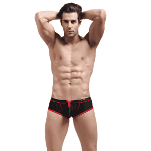 Chinese Professional Lingerie Butterfly Thong - Sex Men Boxer Mesh Low Rise  – Westfox