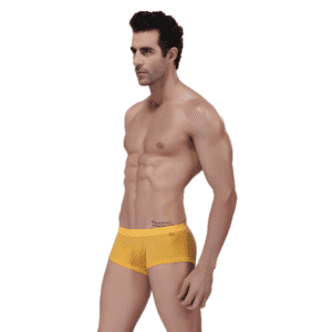 Sexy Boxer Shorts Underwear For Men Factory