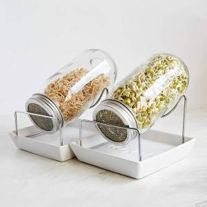 Seed Sprouting Jar Kit 2 Sprouter Mason Jars with Screen Lids