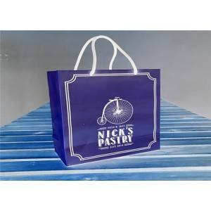 Food Package Bags Silk Color Printing Coated Paper Gift Bags