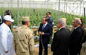 Egypt: Sisi- greenhouses technology to help increase agricultural production