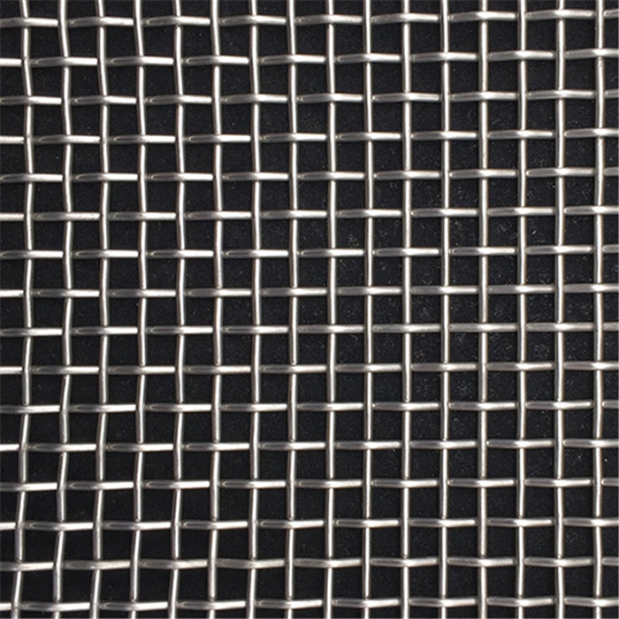 Quality Inspection for Stainless Steel Crimped Wire Netting - Stainless Steel Wire Mesh – DXR