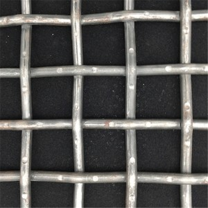 OEM China Wire Mesh Filter Disc - Plain Steel Wire Mesh – DXR