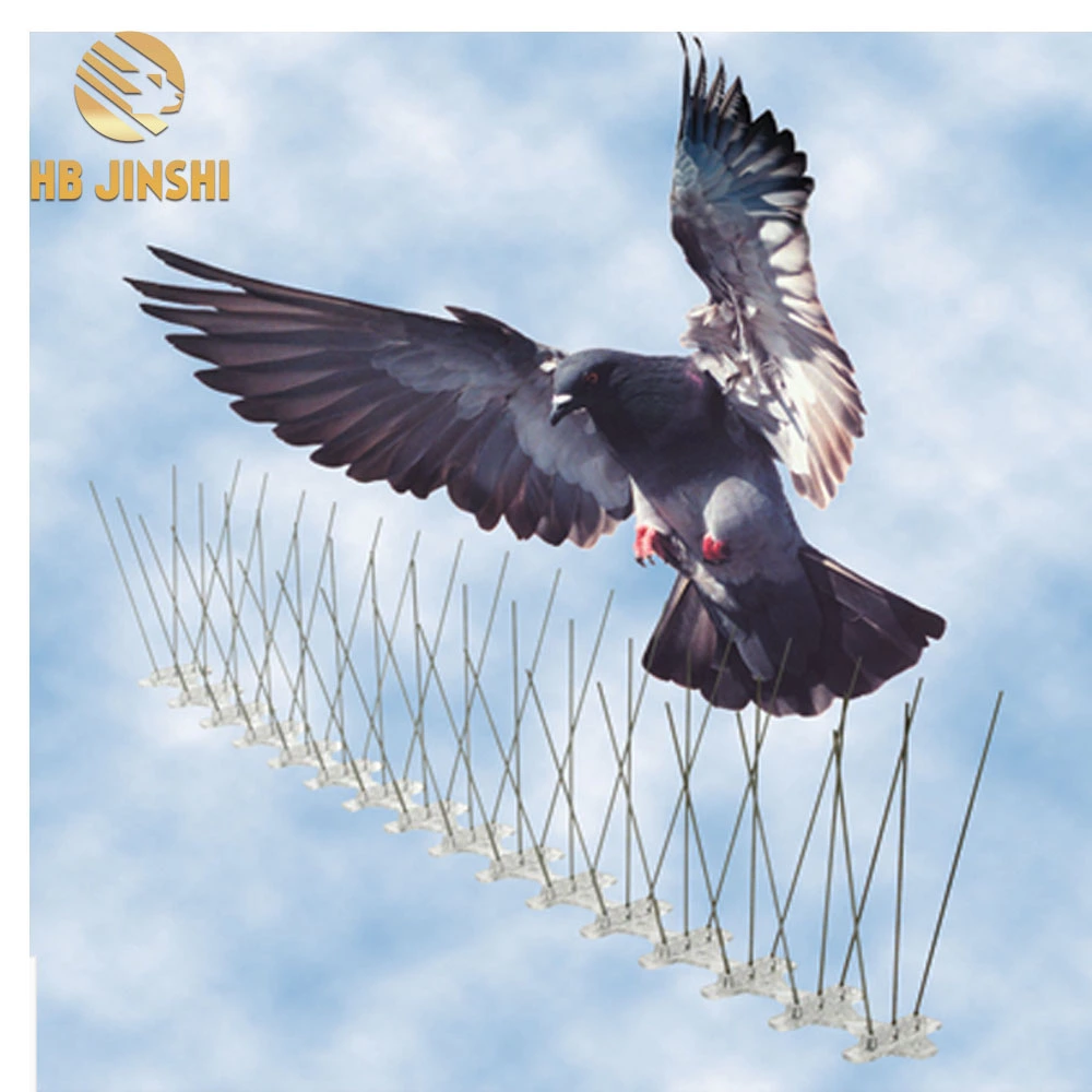 Stainless Steel Anti Pigeon Devices Bird Trap Cage Bird Spikes