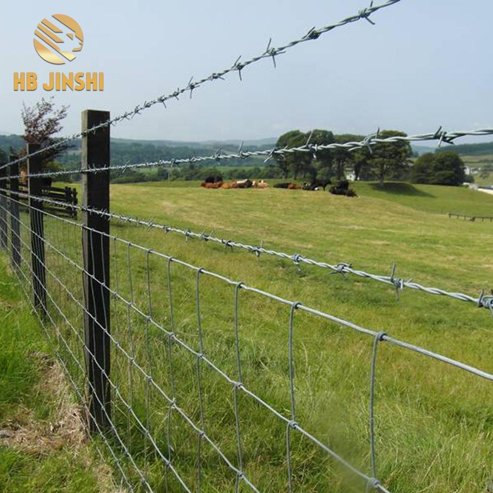 Factory Supply Cheap Price Galvanized Double Twisted Barbed Wire 16 x 16 Barbed Wire Featured Image