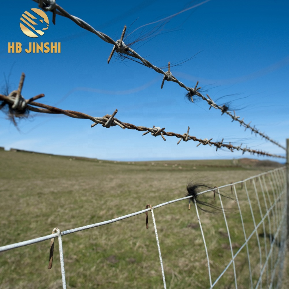 Cheap Galvanized Barbed Wire Price per kg