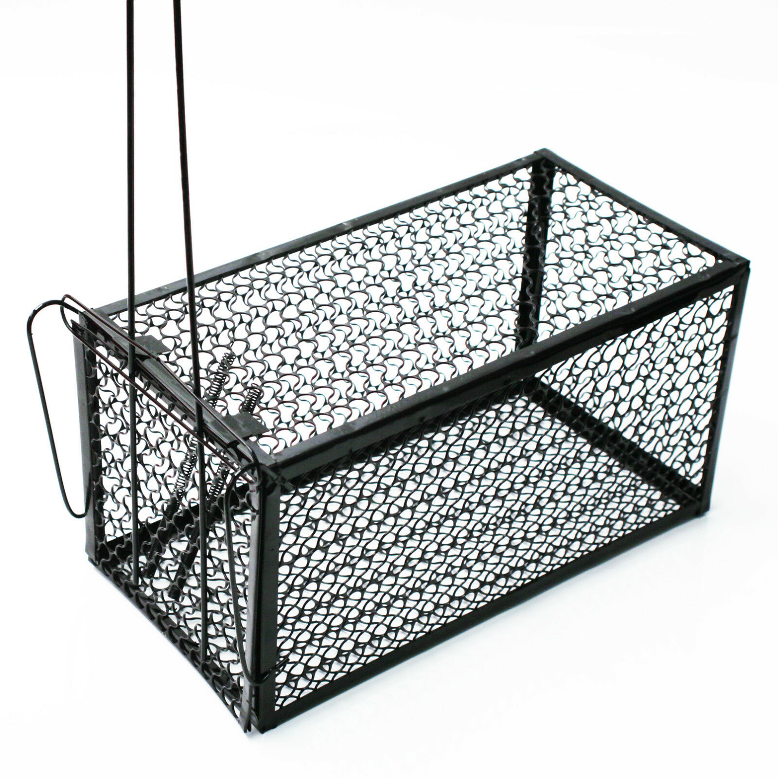 OEM/ODM China Outside Dog Cage -