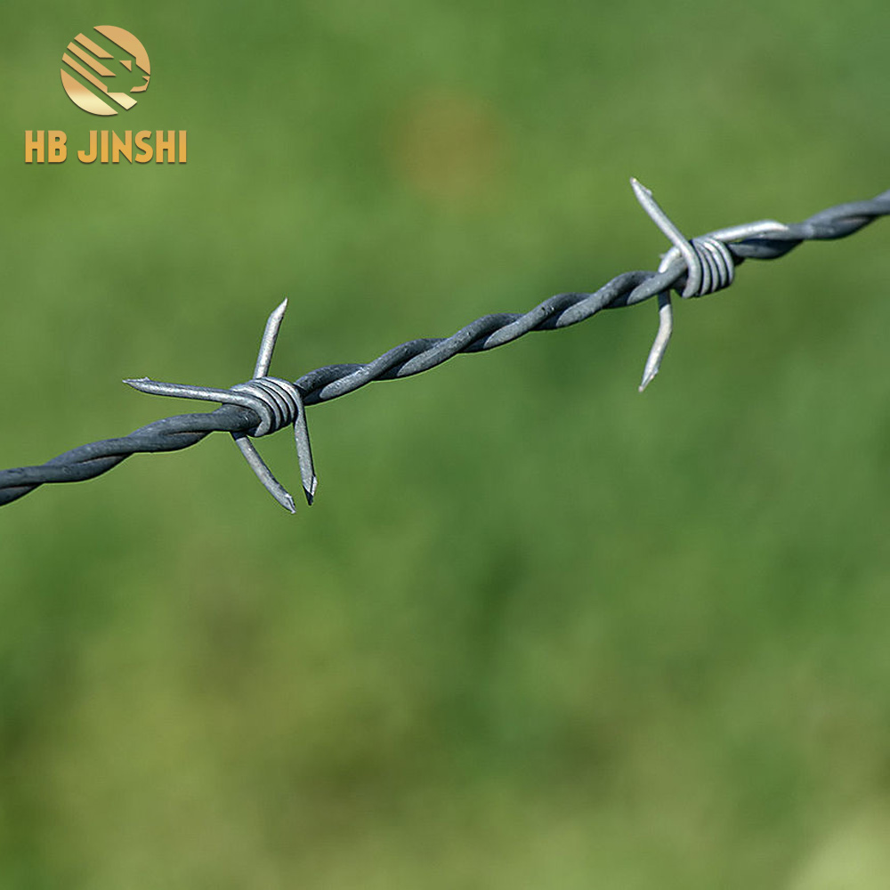 2.5mm galvanized barbed wire fence