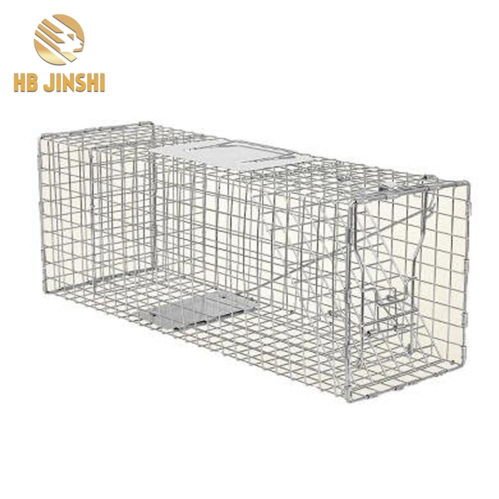China OEM U Shaped Staples -