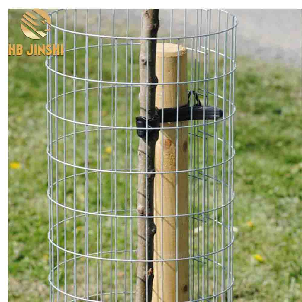 12 G Wire Welded Mesh Tree Fence