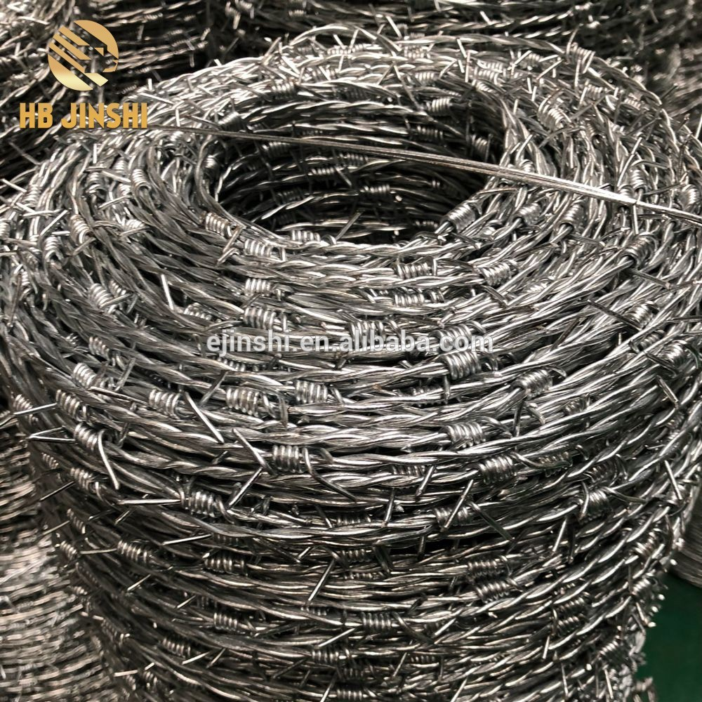 South America market Hot dipped galvanized barb wire 14×14 16×16