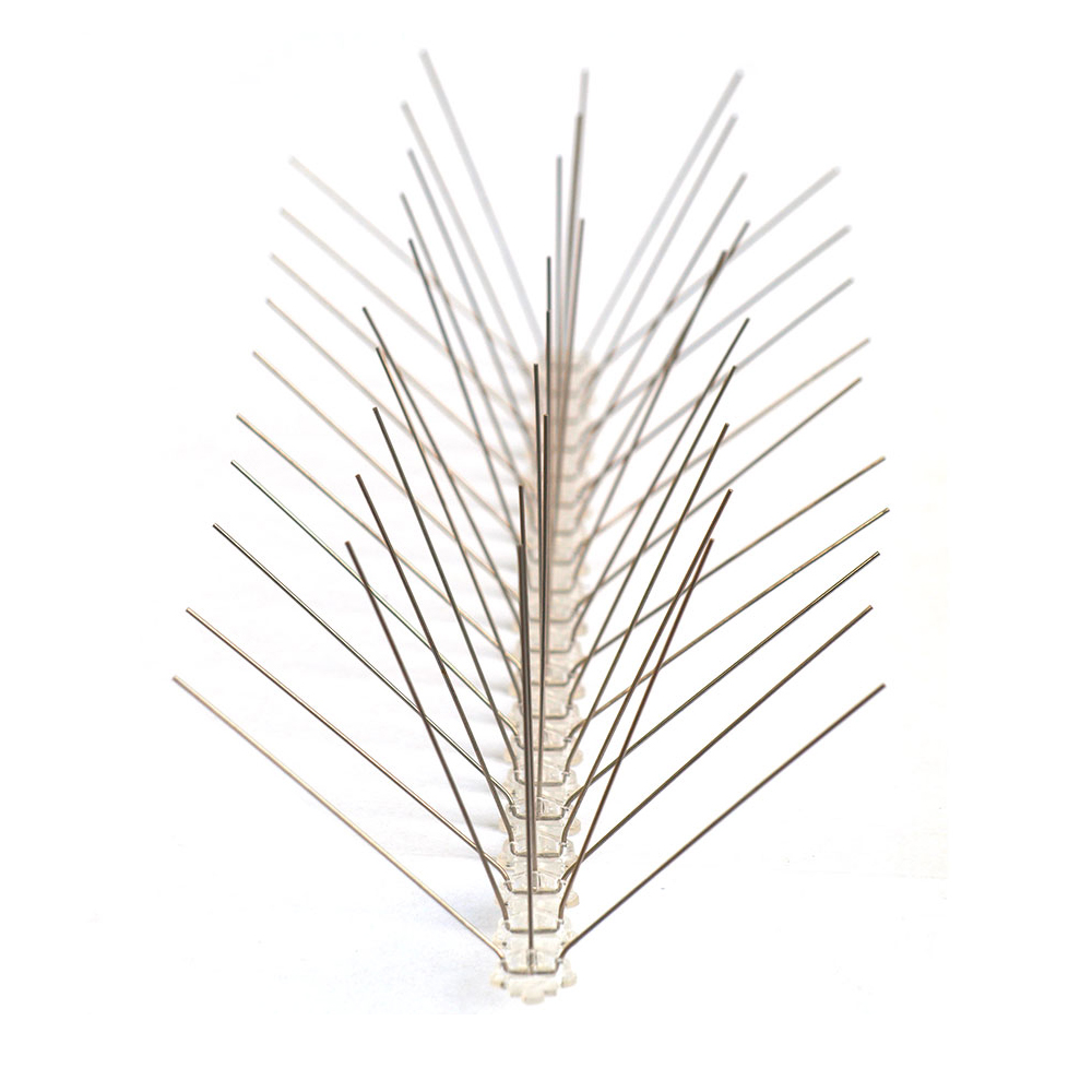 12 Inch Stainless Steel Bird Spikes for fly control