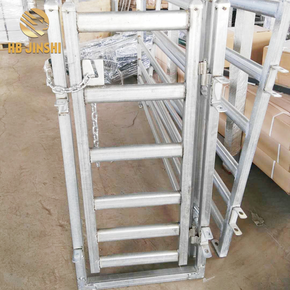 Australia type 0.6×1.2m Sheep race gate with chain and clip
