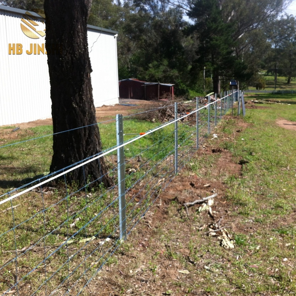 Low Carbon Steel Fence Piles Y Post for Field fence