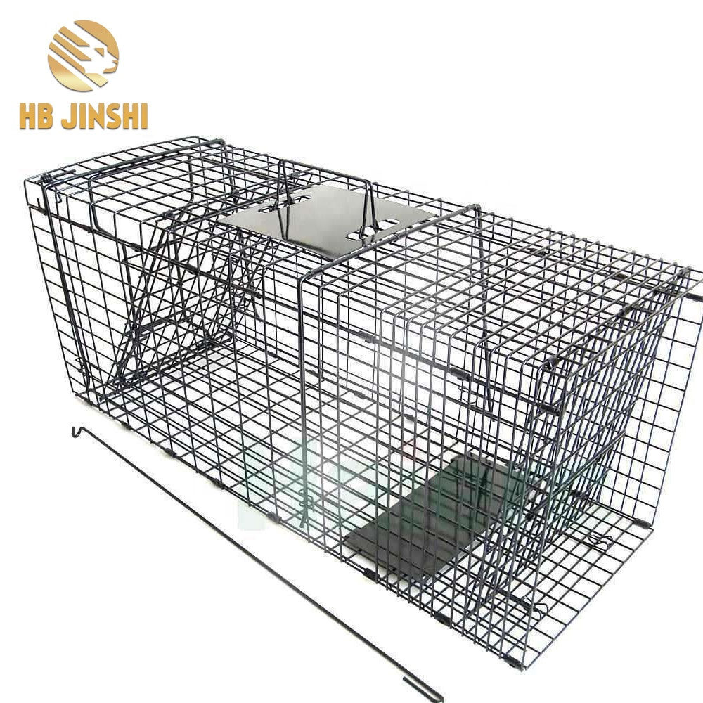 Cat Catch Metal Steel Cage with Handle Metal Trap Cage for Rodents