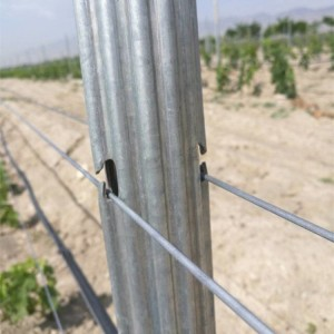 ISO9001 ISO14001 Certificate Factory Galvanized Steel Z Post Vineyard Trellis Post