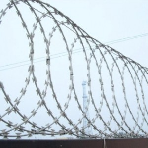 Competitive Price for Double Wire Mesh Fence -