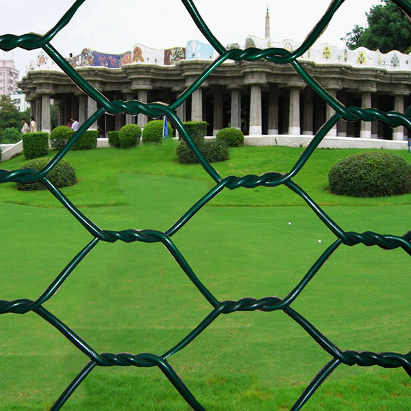 Hexagonal Wire Mesh Featured Image