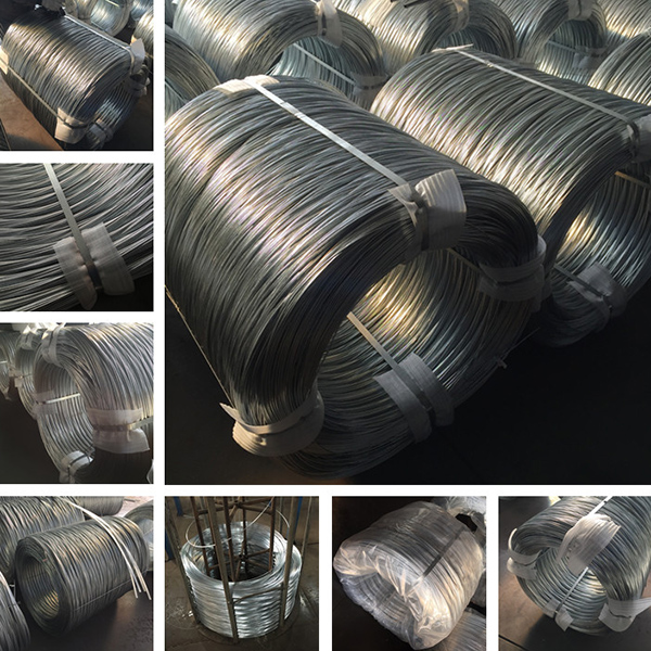 hot dipped galvanized wire (9)