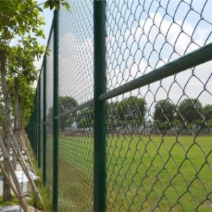 Wire Mesh Fence & Steel Fence