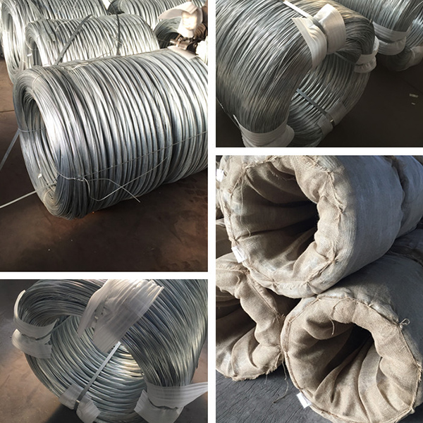 hot dipped galvanized wire (11)