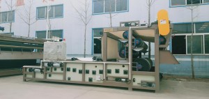 New Arrival China Tons Waste Incinerator -