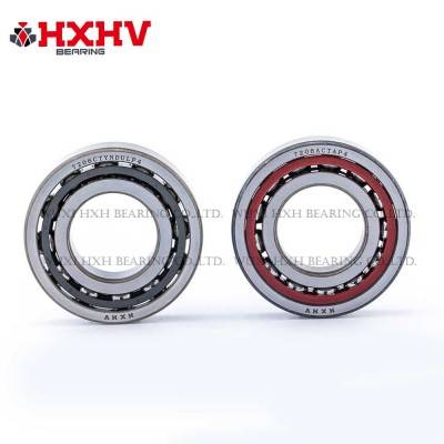 7206CTYNDULP4 & 7206ACTAP4 – HXHV Angular Contact Bearing