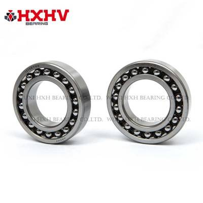 HXHV Self-aligning ball bearings 1210 ETN9 with nylon retainer