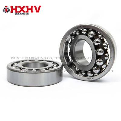 HXHV Self-aligning ball bearings 1309 ETN9 with nylon retainer