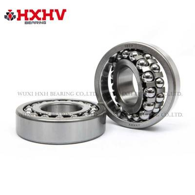 HXHV Self-aligning ball bearings 1309 with steel retainer
