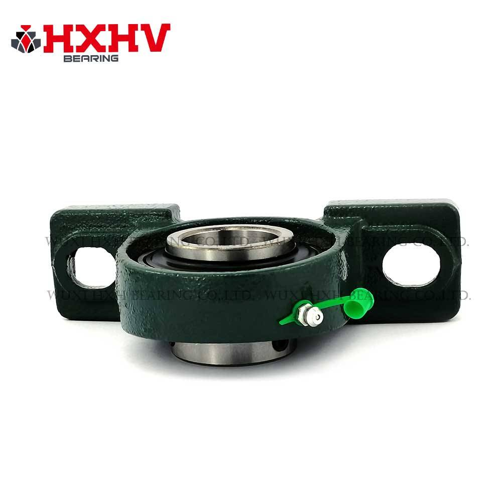 Short Lead Time for Ucp207 Bearing – Pillow block bearing ucp 207 – HXHV Bearings detail pictures