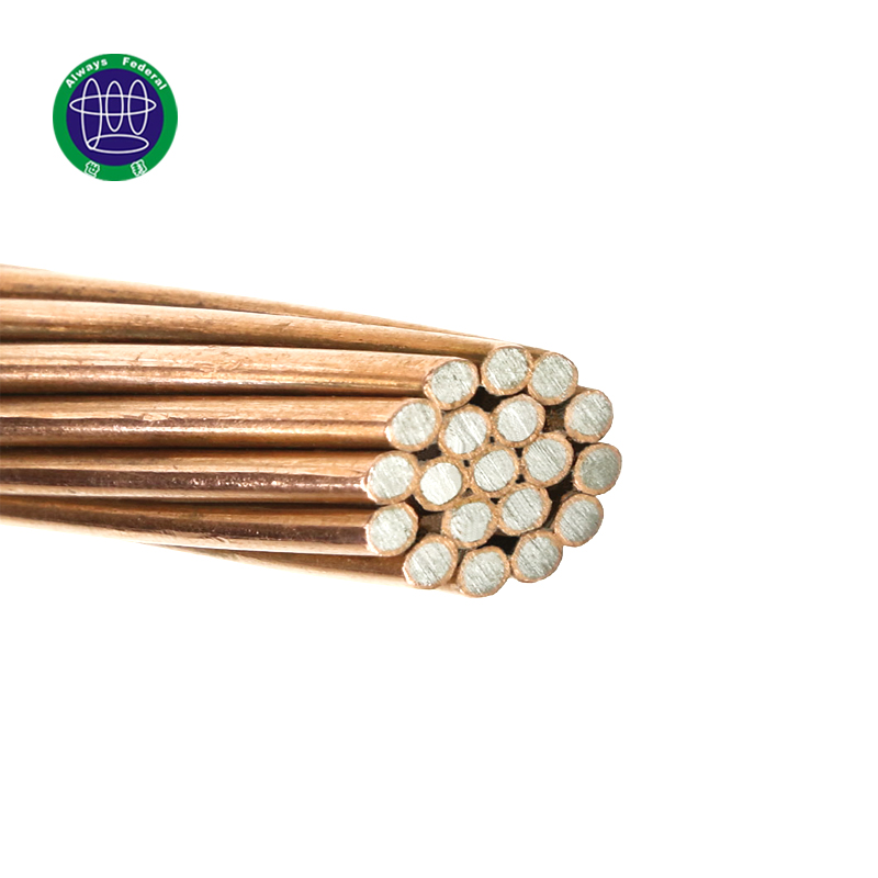 Manufacturer of Copper Plated Steel Wire