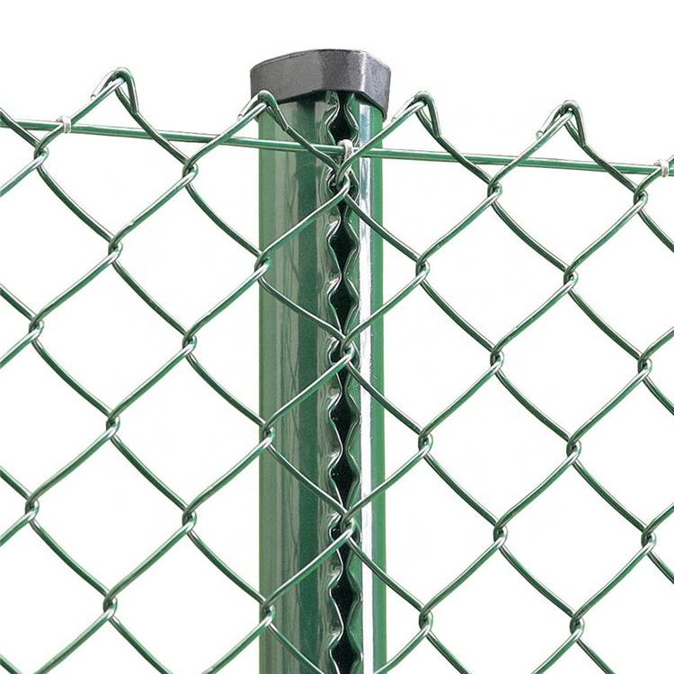 Galvanized and PVC coated rhombus chain link fence Featured Image