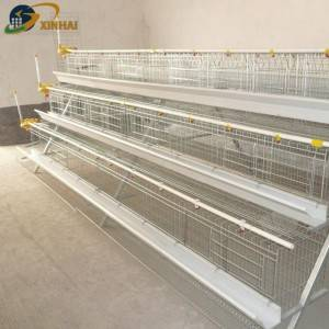XINHAI A 120 layer chicken cage for Africa Market