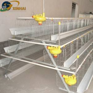 XINHAI factory direct selling poultry cages for Kenya chicken farm
