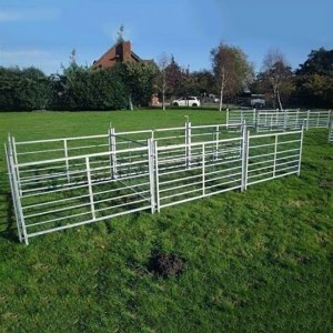 Sheep Fence panels