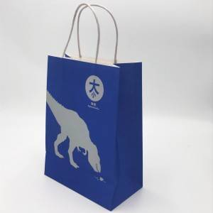 Customized Design Printed Paper Carry Bags