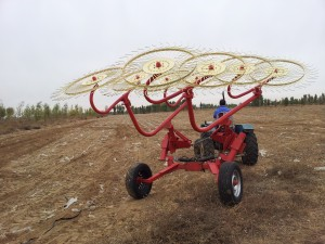 Reasonable price Atv Spreader – Hay Rake 9LZ series – Yijia