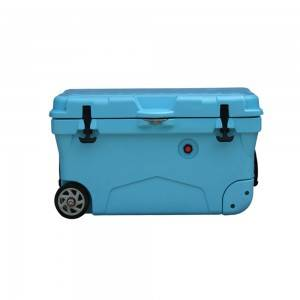 OEM China Cooler Box Picnic -