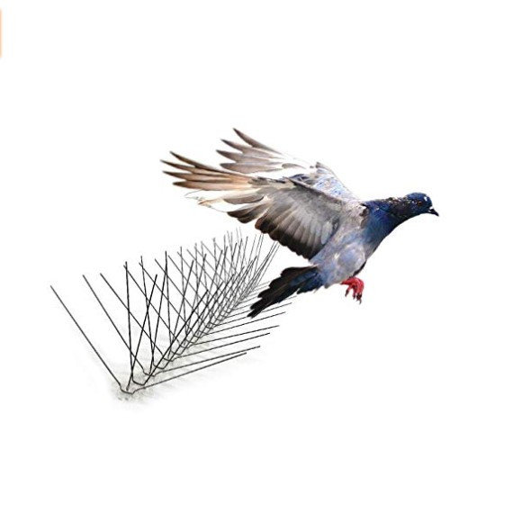much popular Bird Control Product Plastic Anti Pigeon Spike product