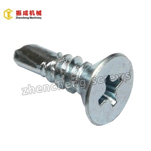 Philip Flat Serokê Self Tapping Û Self Drilling Screw 2