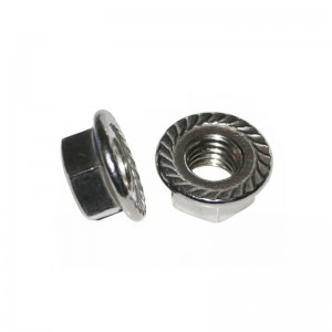Hot Sale for Flange Nut -