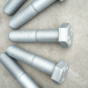 One of Hottest for Square Collar-Head Bolt -